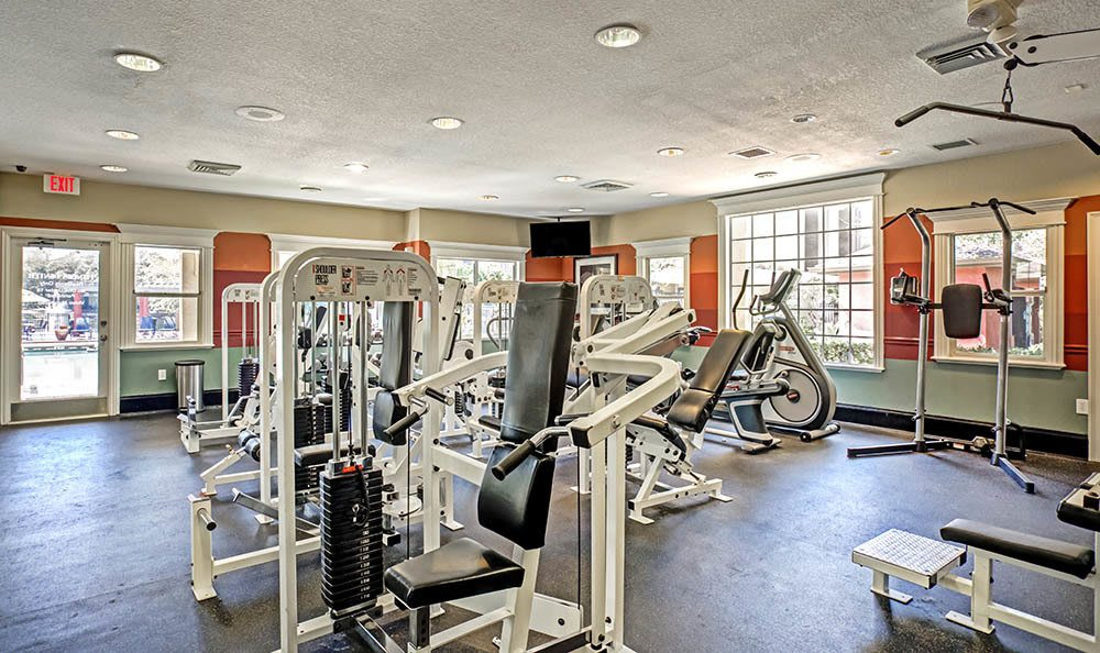 Fitness Center at Sabal Palm at Carrollwood in Tampa,FL