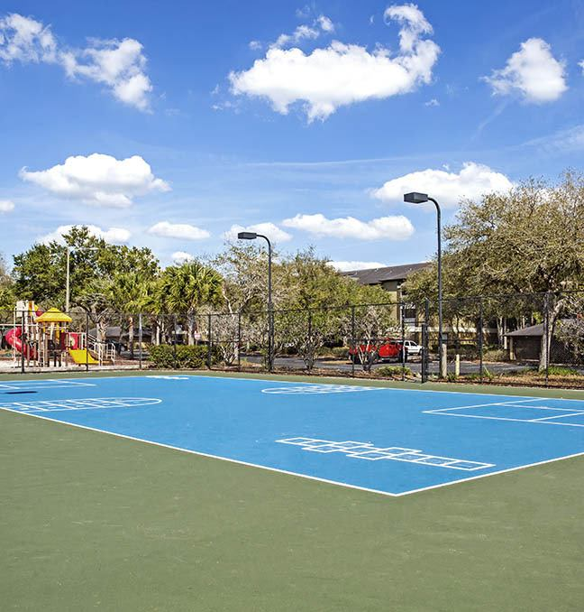 Sport Court at Sabal Palm at Carrollwood