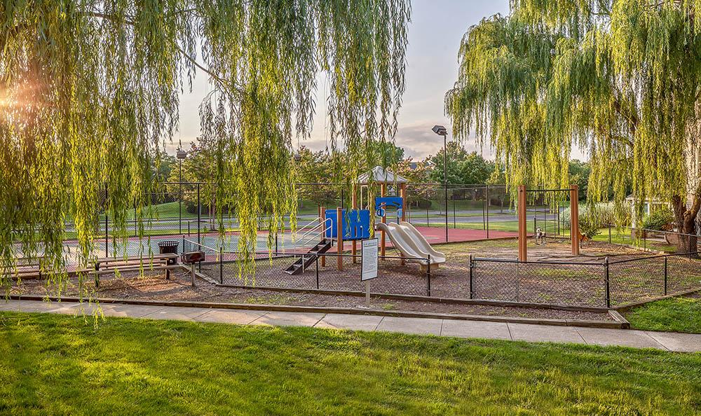 Play Ground at Sussex at Kingstowne