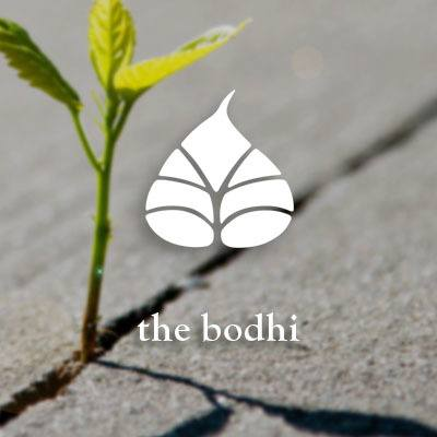 View Bodhi at Island Creek Village's website