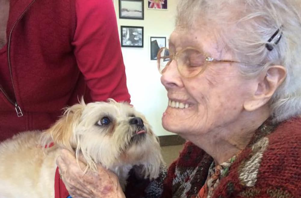 senior resident petting a cute dog