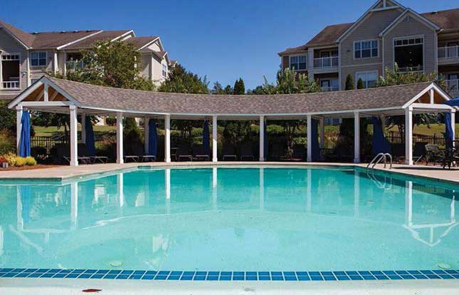 Take a dip in the dazzling pool at Belle Vista Apartment Homes.