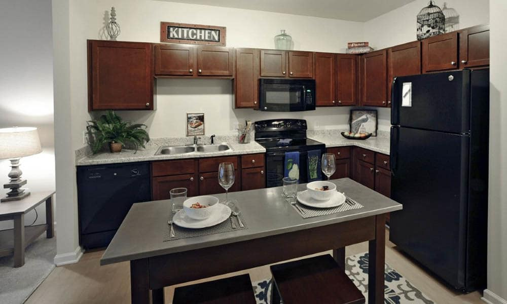 Kitchen option in apartments in Raleigh