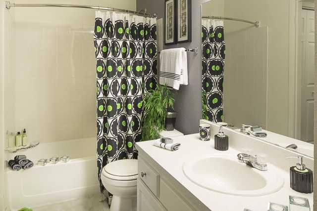 Northgreen at Carrollwood bathroom