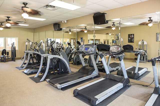 Northgreen at Carrollwood fitness center
