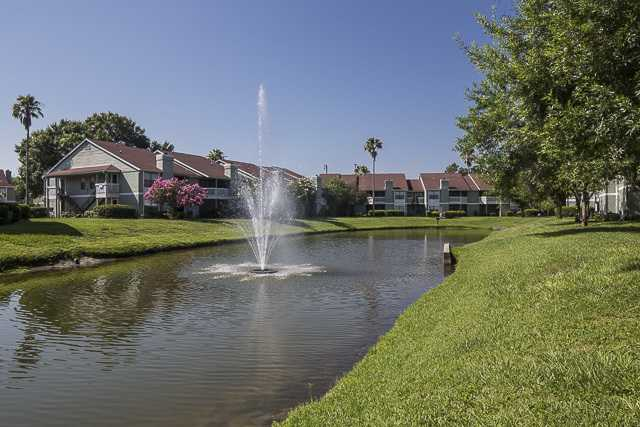 Northgreen at Carrollwood lake and fountain