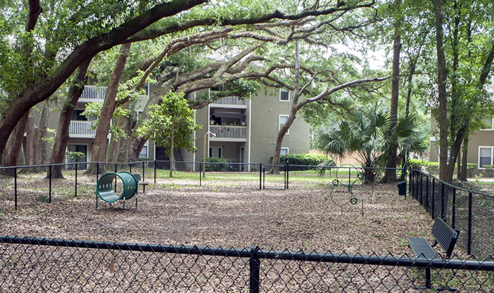 Onsite Dog Park at The Reserve at Mandarin in Jacksonville, FL