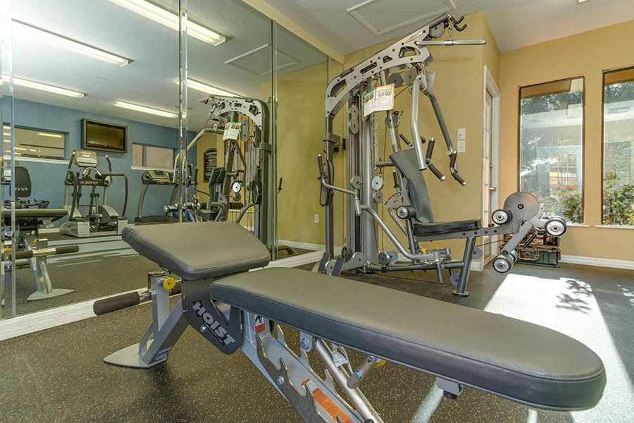 Fitness center at apartments in Tampa