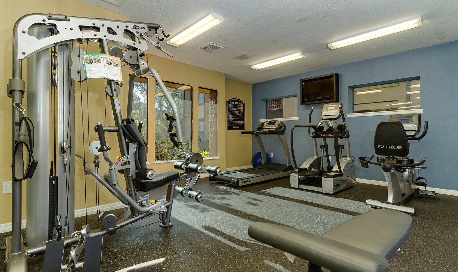 Fitness center at Waterstone at Carrollwood Apts in Tampa, FL