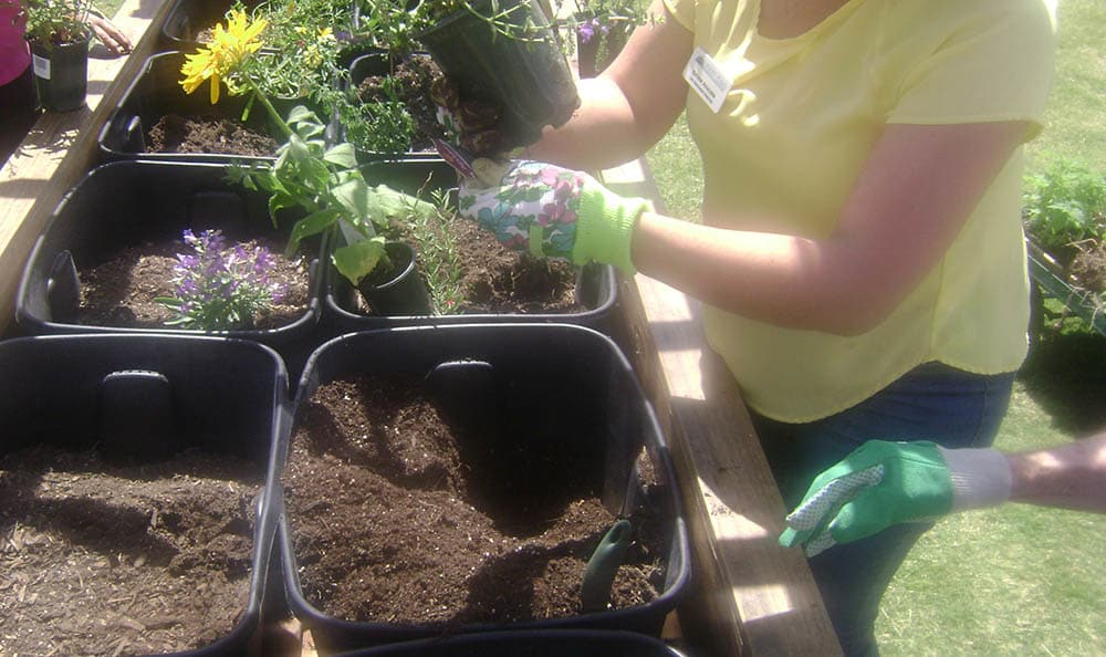 Gardening with team members at senior living in Las Cruces