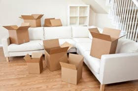 Packing boxes on sofa
