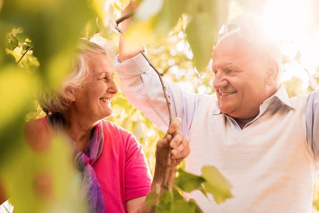 Elderly couple frolic in the leaves