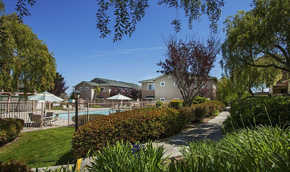 Landscaping at Knollwood Meadows Apartments in Santa Maria