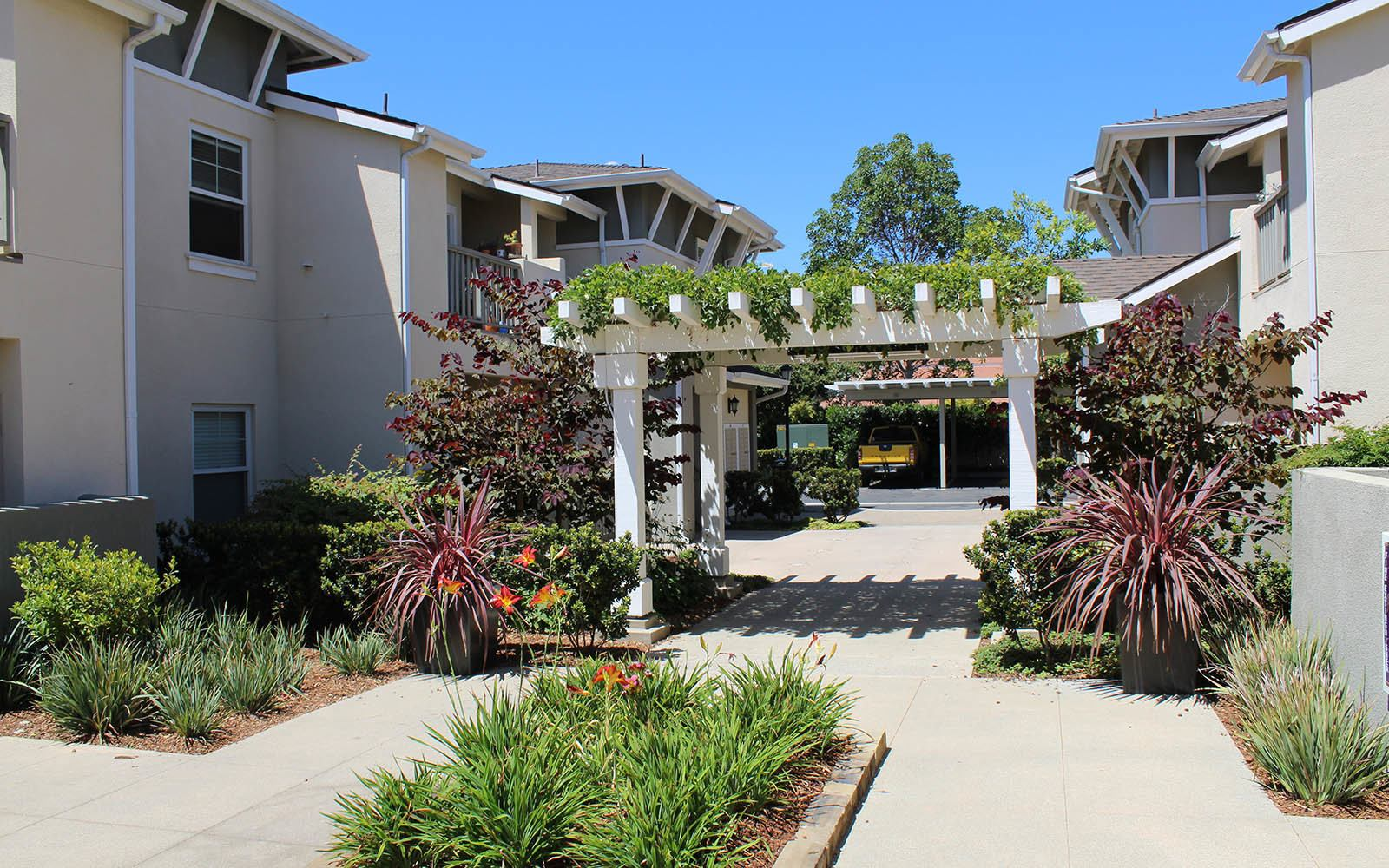 Landscaping Ralston Courtyard Apartments in Ventura
