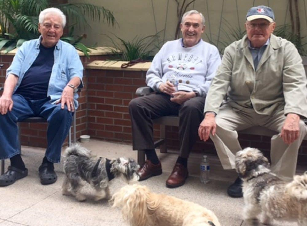 Gentlemen with dogs at Merrill Gardens at Bankers Hill in San Diego