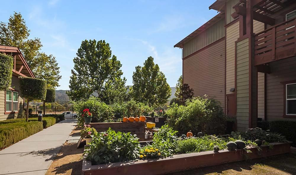 Learn more about our community for yourself at Merrill Gardens at Gilroy