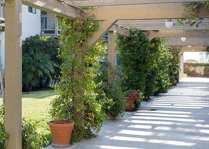 Beautiful Grounds At Del Obispo Terrace Senior Living In San Juan Capistrano CA