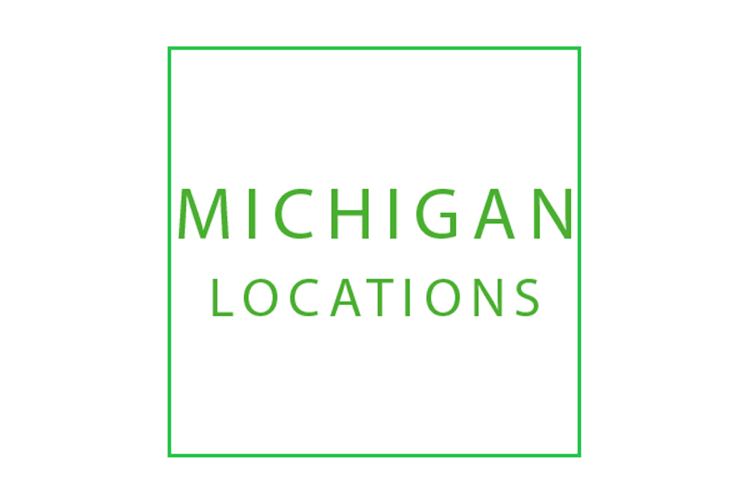 Mini Storage Depot Michigan locations