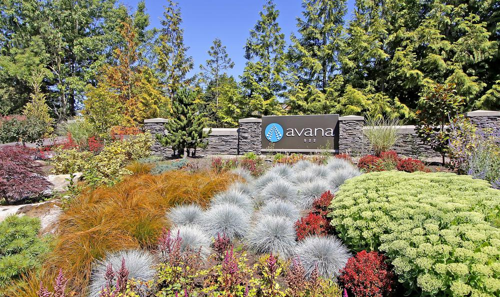 beautiful garden at Avana 522 Apartments in Bothell, WA