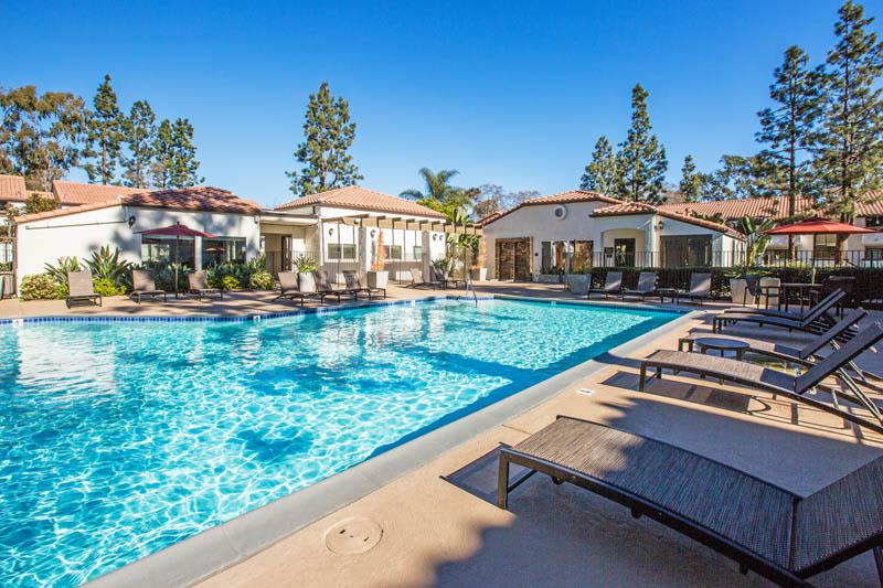 Pool at Avana La Jolla Apartments in San Diego, CA