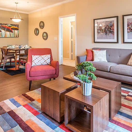 View photos of Avana Stonebriar Apartments in The Colony
