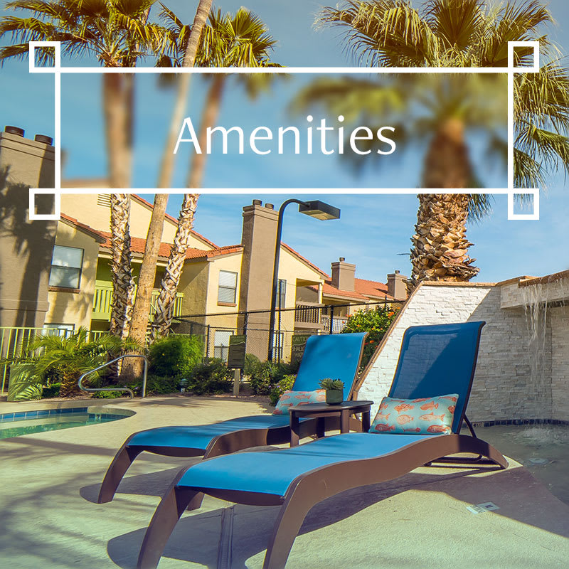 Amenities at Arbors at Orange Park