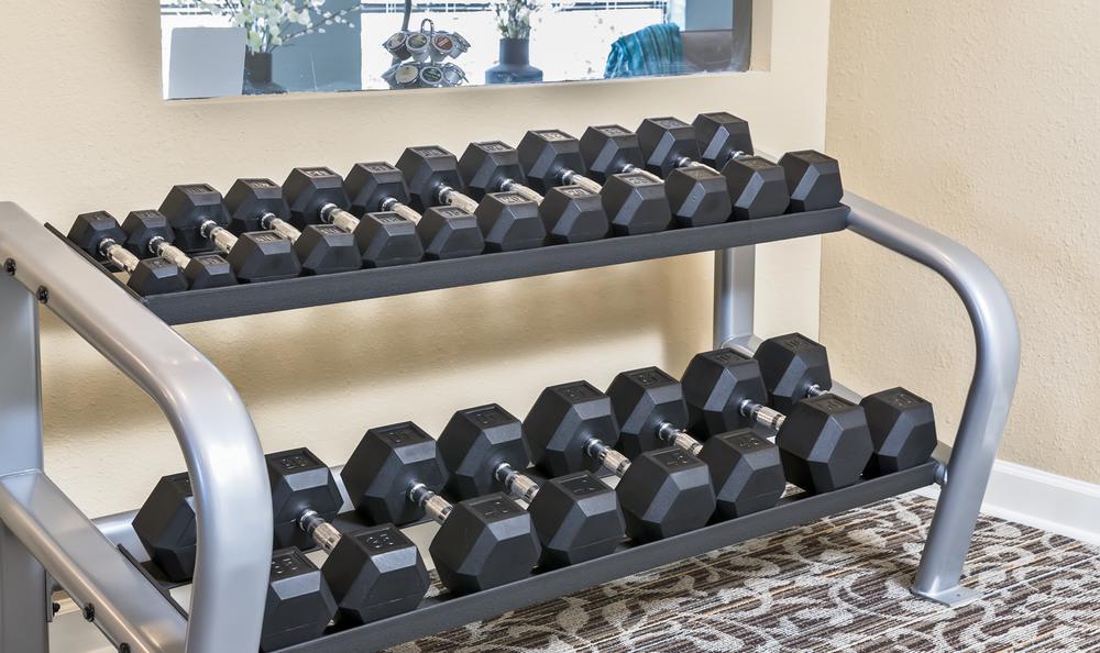 Weights Room at Arbors at Orange Park in Orange Park, FL