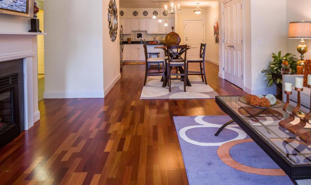 Well Design Apartment at Avana Abington Apartments in Abington, MA