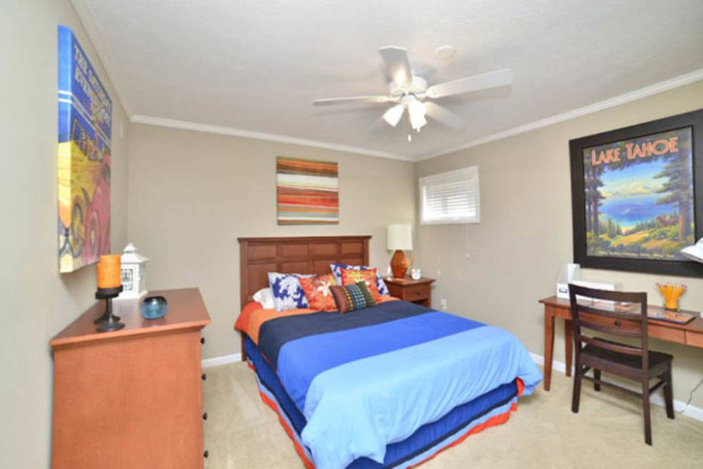 Bright and bold bedroom in apartment at Eagles West Apartments in Auburn