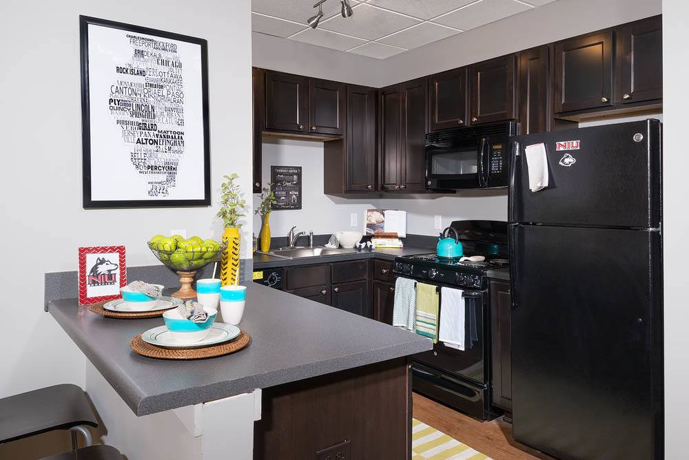 Apartments in Dekalb feature modern kitchens
