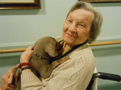 Pet Friendly Senior Care In Elk Grove