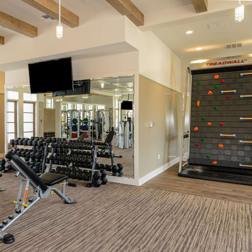 State of the art fitness center at Palm Bay Club
