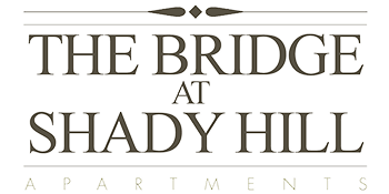 The Bridge at Shady Hill