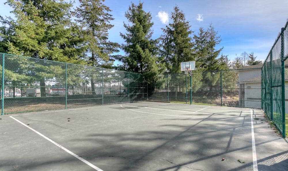 Basketball court at Pebble Cove Apartments in Renton