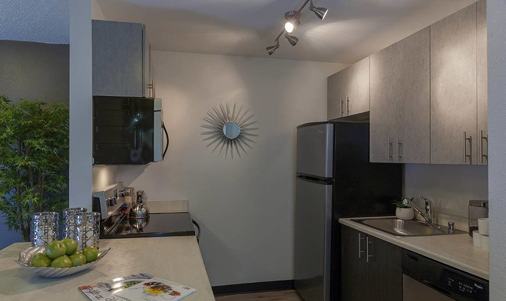 stainless steel appliances at Karbon Apartments
