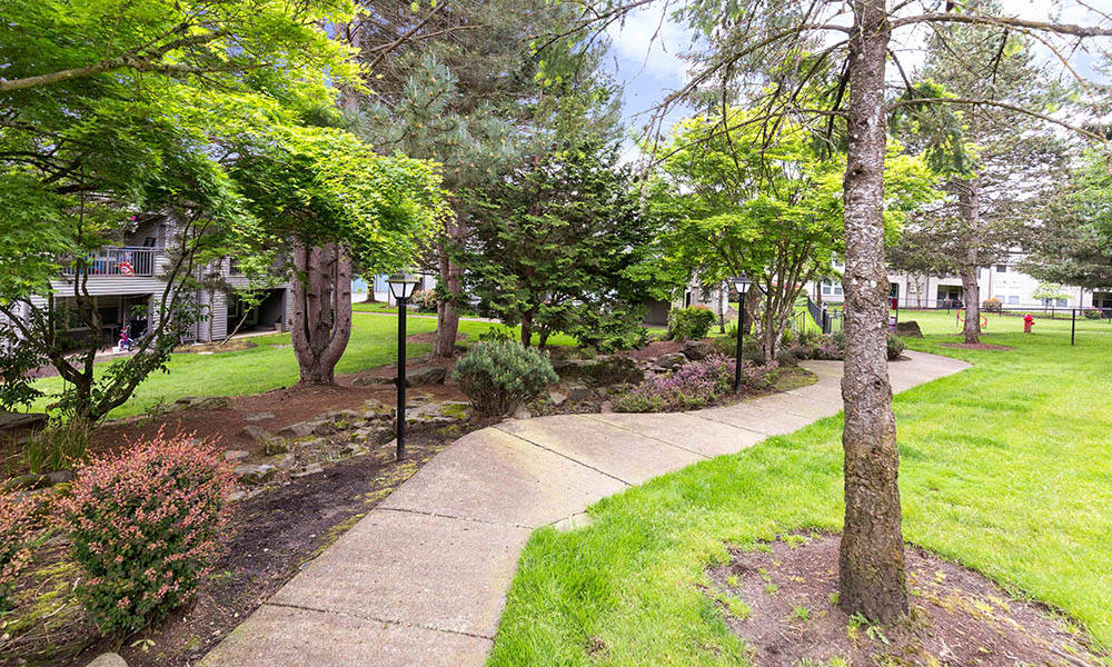 Coutyard at Meadows at Cascade Park Apartments