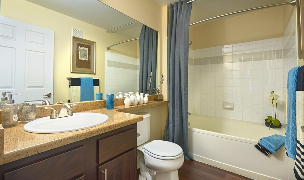 Bathroom at Promenade at Hunter's Glen Apartments