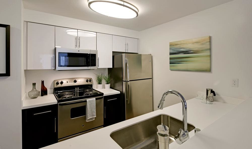 Narrow Kitchen Design at Elan 41 Apartments in Seattle, WA