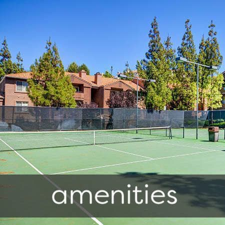 Amenities at Sierra Del Oro Apartments