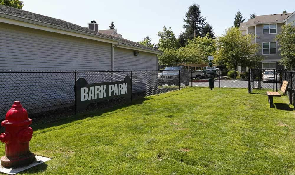 The community dog park