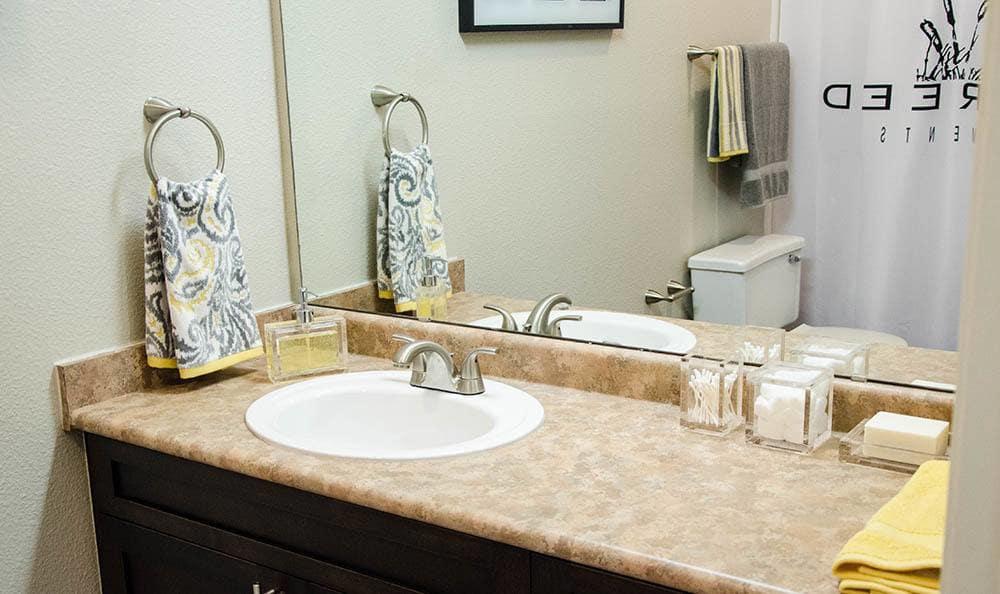 Master Bathroom at Wildreed Apartments