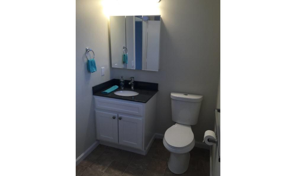 Renovated bathroom at Briar Knoll