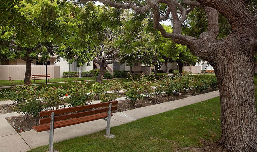 Beautiful Landscaping at Shepard Place Apartments in Carpinteria, CA