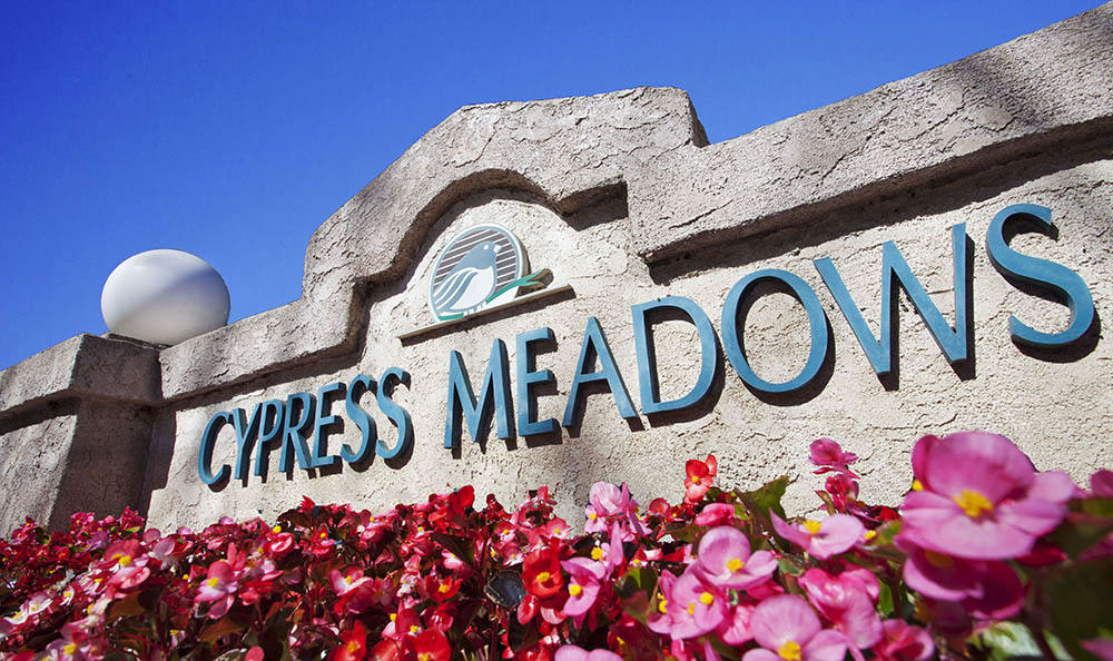 Signage Surrounded By Flowers at Cypress Meadows Senior Apartments in Ventura, CA