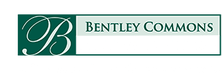 Bentley Commons at Paragon Village