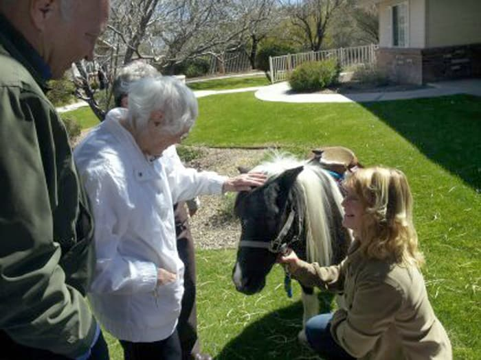 Pacifica Senior Living Tucson offers equine therapy