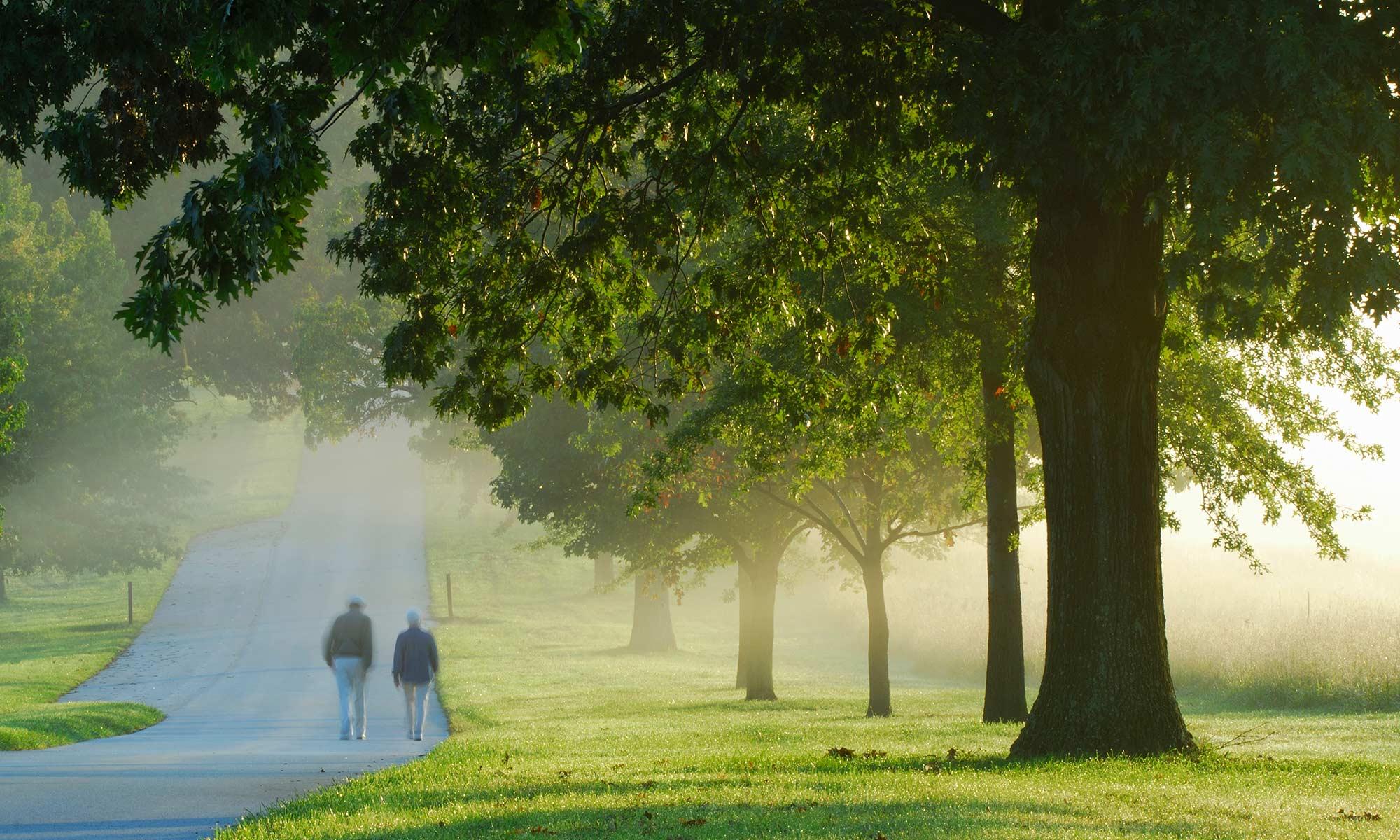 Senior living residents walking down a road next to a grassy field near Kephart Plaza