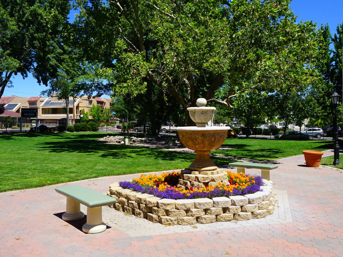 Grassy areas to run and play with friends at Regency Park Apartments.
