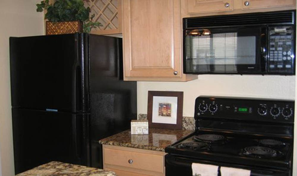 Springs at Bandera Apartments model kitchen
