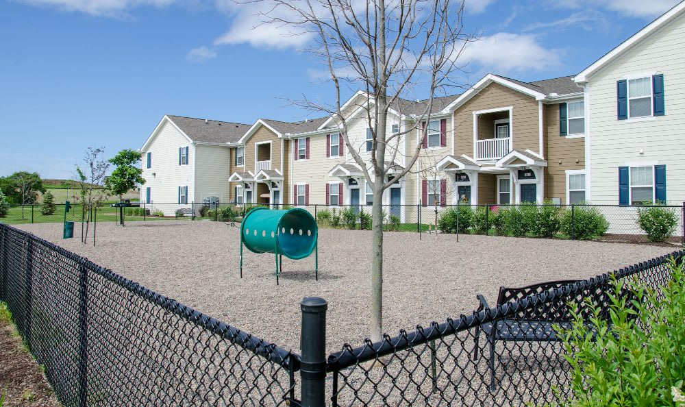 Pet-friendly areas at Springs at Bettendorf